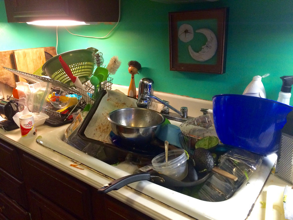 A messy kitchen can attract bugs and rodents into your property.